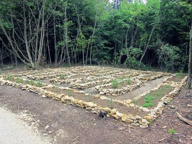 Little herb garden. Photograph: KW.