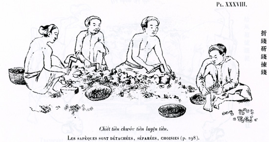The cash coins are counted and strung together on slings by which they became easy to handle. From A. Schroeder-Annam, Études numismatiques, Paris (1905), pl. 40.