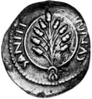 Die Münzen des Amminus ähneln so sehr denen des Cunobelinus (links), dass es sich bei Amminus sicher um den historischen Adminius handelt (rechts). Foto: Chris Rudd.