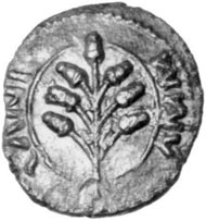 Amminus' coins are so like Cunobelinus' coins (left) that he must be the historical Adminius (right). Photo: Chris Rudd.