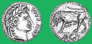 Bronzemünze des Agr, geprägt in Camulodunon um etwa 25 bis 30 n. Chr. Bevor Amminus über Kent herrschte? Quelle: Jane Bottomley.