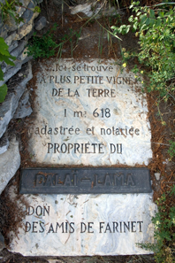This slab indicates the world's smallest vineyard measuring 1.618 square metres and gives its current owner, the Dalai Lama. Photo: Ludovic Péron / http://creativecommons.org/licenses/by-sa/3.0/deed.en.