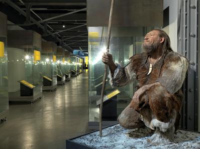 Neandertaler im Zeittunnel von 1 Mio. Jahren. Modell von Marcel Nyffenegger. Museum zu Allerheiligen Schaffhausen.