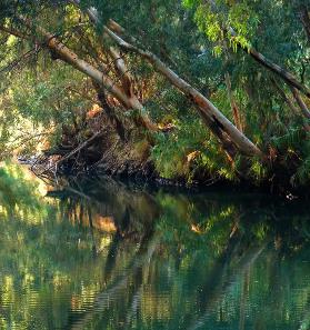 River Jordan/ Wikipedia.