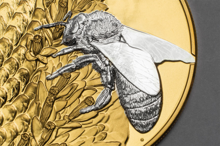 Possible thanks to the latest technology: Micro-relief of bee and pollen in minute detail.