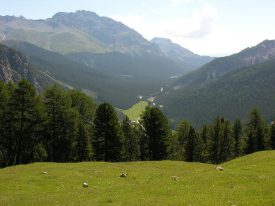 The Swiss National Park. Photo: Hansueli Krapf / http://creativecommons.org/licenses/by-sa/2.5-2.0-1.0