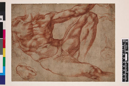 Studies of a reclining male nude: Adam in the fresco 'The Creation of Man' on the vault of the Sistine Chapel. c. 1511 Dark red chalk over some stylus underdrawing (left calf and elsewhere). Michelangelo. © The Trustees of the British Museum.