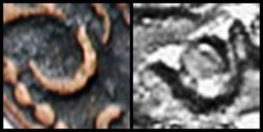 Abb. 3 und 4: Das C - links der Paduaner - und rechts das Original