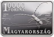 Hungary / 2015 / 10000 HUF / silver .925 / 31.46 g / 26.4 x 39.6 mm / Design: István Kósa / Mintage: 5,000.