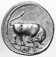 11 (13) RIC I2, 166 a. Augustus, Aureus, Lyon um 8 v. Chr., Gewicht: 7,855 g. Vs: Porträt mit Lorbeerkranz, AVGVSTVS DIVI F. Rs: Stier.