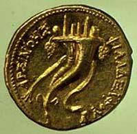 10 (30) Ptolemaios IV. Philometor, Gold-Oktadrachmon, um 181-145 v. Chr., Vs: Arsinoe II. mit Ammonshorn. Rv: Zwei Füllhörner.