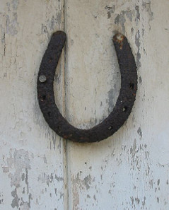 Horseshoe on door.