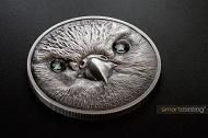 Wildlife Protection - Saker Falcon.