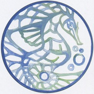 Kanako Koshino was chosen as 'Future Designer' with her coin design 'The Birth'.