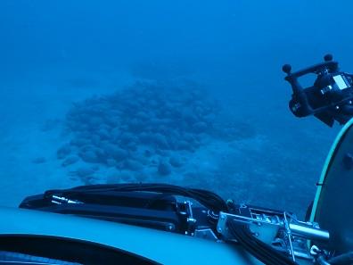 ROV approaches amphora Photo: ©Soprintendenza per i Beni culturali e ambientali del Mare, Palermo.