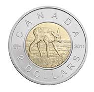 Canada - $2  - Elk Calf (Designer: Christie Paquet) - Mintage: 15.000.