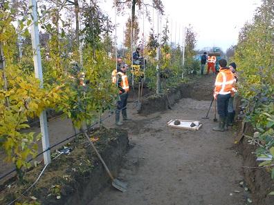 Die Archäologen bei der Ausgrabung am Fundort im November 2016.