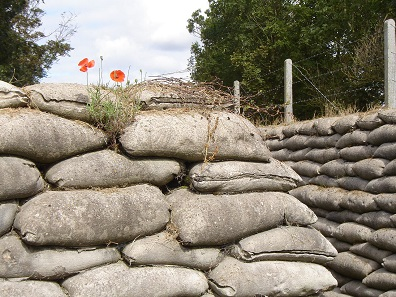 Communication trench with poppies in East Flanders. Photo: LimoWreck / Wikimedia Commons / CC BY-SA 3.0.
