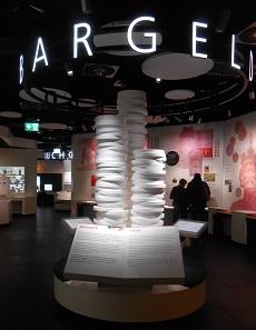 Bargeld: Der erste von vier Ausstellungsbereichen.