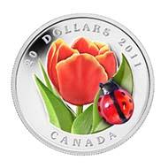 Canada - 20 CAD - 999silver - 31.39 g - 38 mm - Design: Giuliano Donnagio (ladybug) (reverse), Susanna Blunt (obverse) - Mintage: 5,000.
