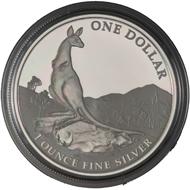 One dollar coin 2013.