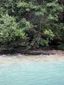 The springs of Acheron. Photograph: KW.