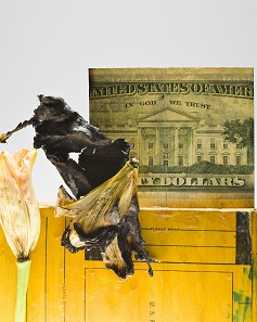 Matthias Herrmann steuerte diese Collage aus verwelkter, brennender Blume und Dollarschein (2018) bei. Foto: Kunst im Traklhaus.