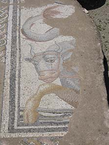 Mosaic from the Roman Baths. Photograph: KW.