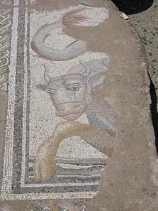 Mosaik aus den römischen Thermen. Foto: KW.