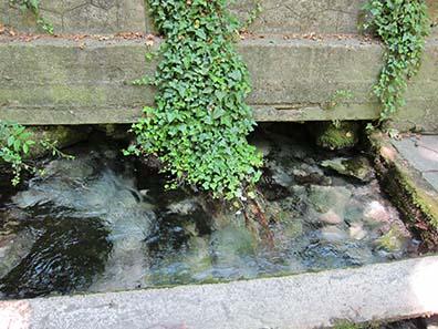 Die Quelle der Daphne. Foto: KW.
