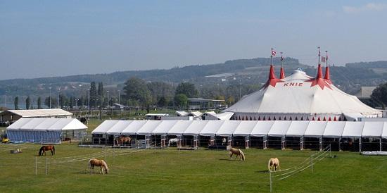 Der Circus Knie heute. © Circus Knie.