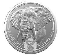 """Das erste Motiv der neuen """"Big Five""""-Serie: der Elefant."""