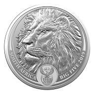 """Ein weiteres Motiv der """"Big Five""""-Serie zeigt einen Löwen."""