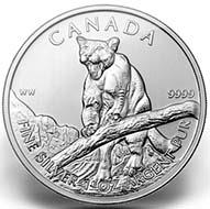 2012 silver coin