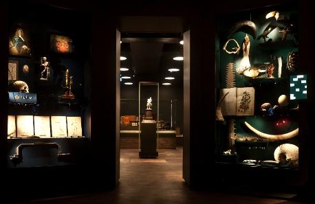 Cabinet of curiosities inside. Photo: HMB Philipp Emmel.