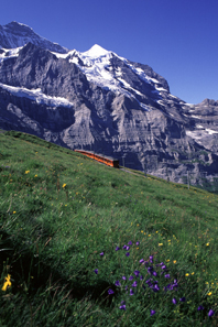 Jungfraubahn zwischen Eigergletsch und Kleine Scheidegg, 2006. Foto: Peter Alder / Wikipedia.
