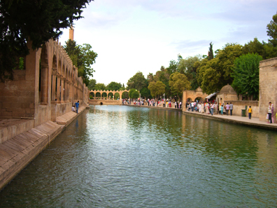 The fish ponds of Urfa. Photo: UK.