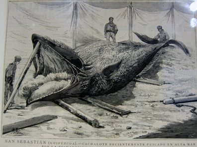 The Slaughtering of a Whale. Photo: KW.