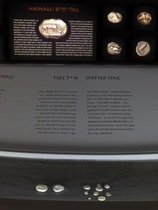 Der Stater des Phanes, im Hintergrund Vergrößerungen. Foto: Israel Museum.